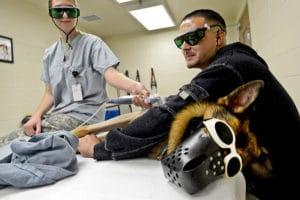 Bestrahlung gegen Krebs bei Hunden