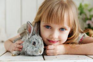 Kaninchen können ein zerstörerisches Verhalten entwickeln