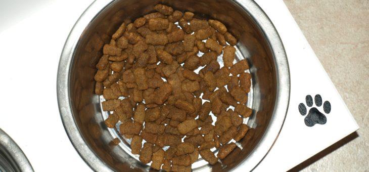 Verursacht getreidefreies Hundefutter dilatative Kardiomyopathie?